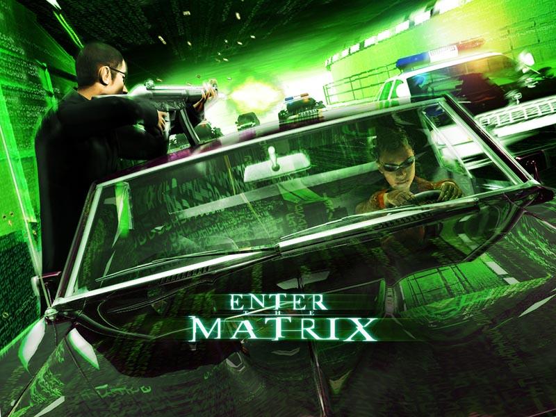 Enter the matrix скачать торрент бесплатно на компьютер (pc).